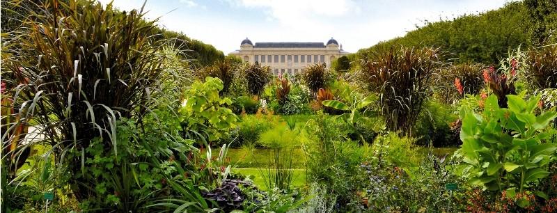 Il giardino delle piante di parigi il pi grande orto - Giardino in francese ...