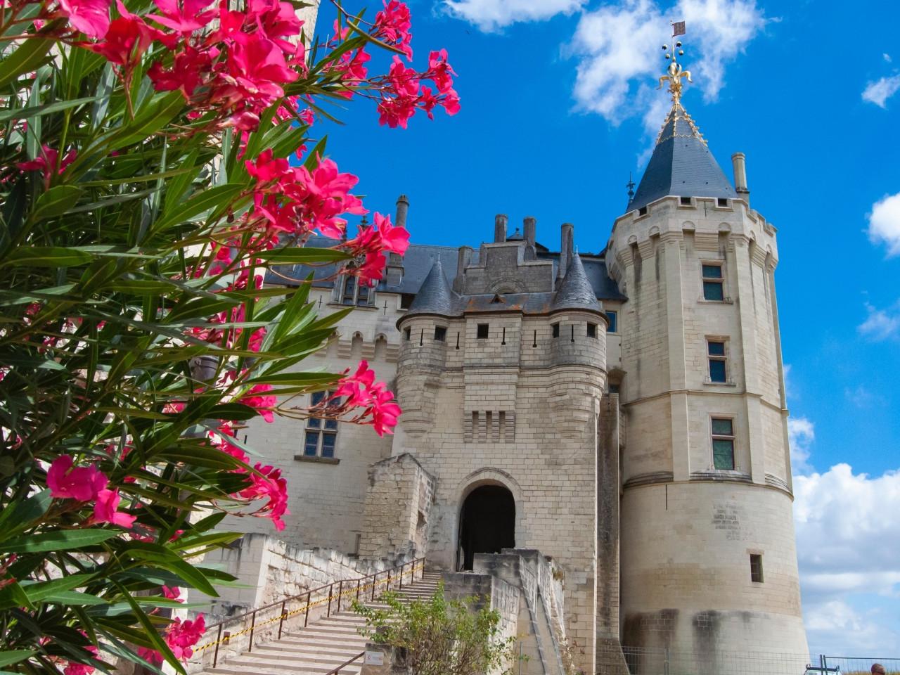 Visitare i castelli della Loira in Francia - informazioni utili