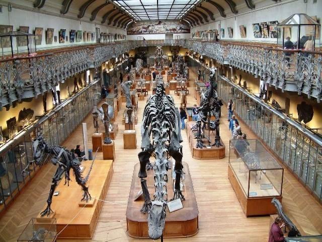 Museo nazionale di Storia naturale - MNHN – Informazioni turistiche ed orari di apertura