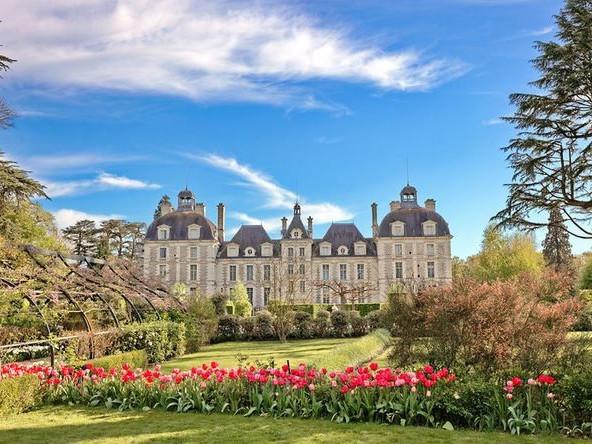 Photo Gallery Castello di Cheverny Valle della Loira