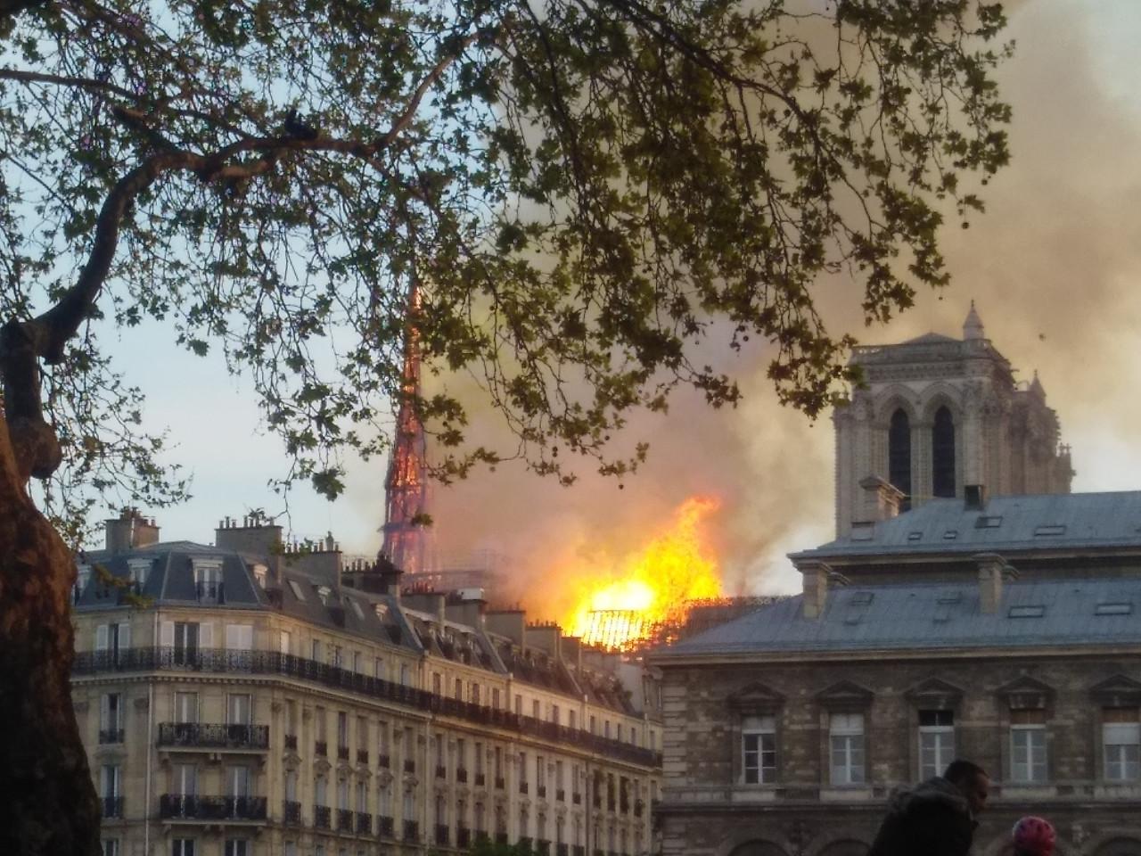 Incendio Notre Dame: cosa è successo, cosa sapere se vai a Parigi