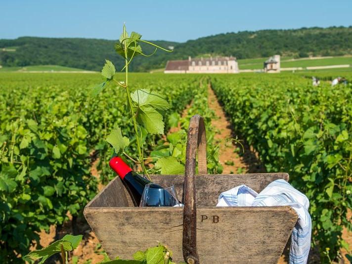 Borgogna, cosa vedere e come raggiungerla da Parigi